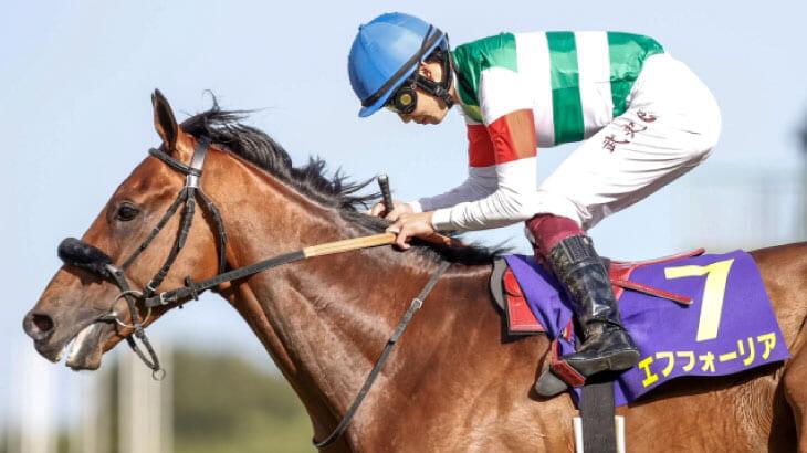 皐月賞馬エフフォーリア、天皇賞秋から始動