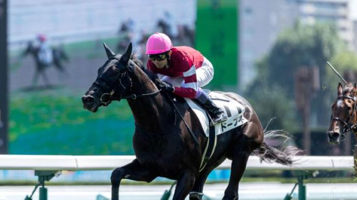 サイバーエージェント藤田晋の所有馬がデビュー勝ち
